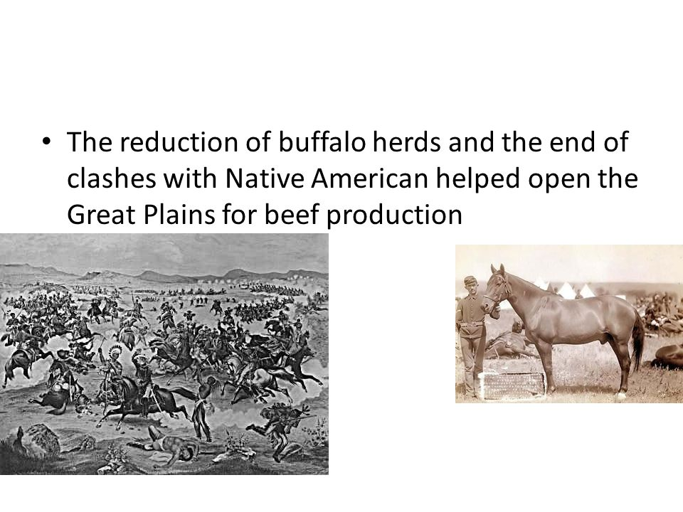 The reduction of buffalo herds and the end of clashes with Native American helped open the Great Plains for beef production