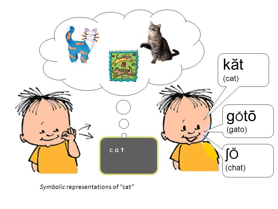 "Symbolic representations of ""cat"" k ӑt (cat) c a t g Ŏ tō (gato) ʃ Ŏ (chat)"