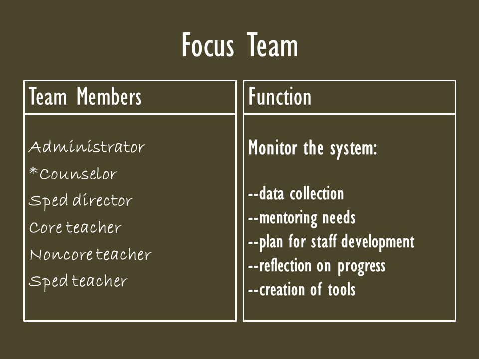 Focus Team Team Members Administrator *Counselor Sped director Core teacher Noncore teacher Sped teacher Function Monitor the system: --data collection --mentoring needs --plan for staff development --reflection on progress --creation of tools