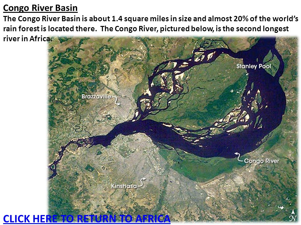 Congo River Basin The Congo River Basin is about 1.4 square miles in size and almost 20% of the world's rain forest is located there. The Congo River,
