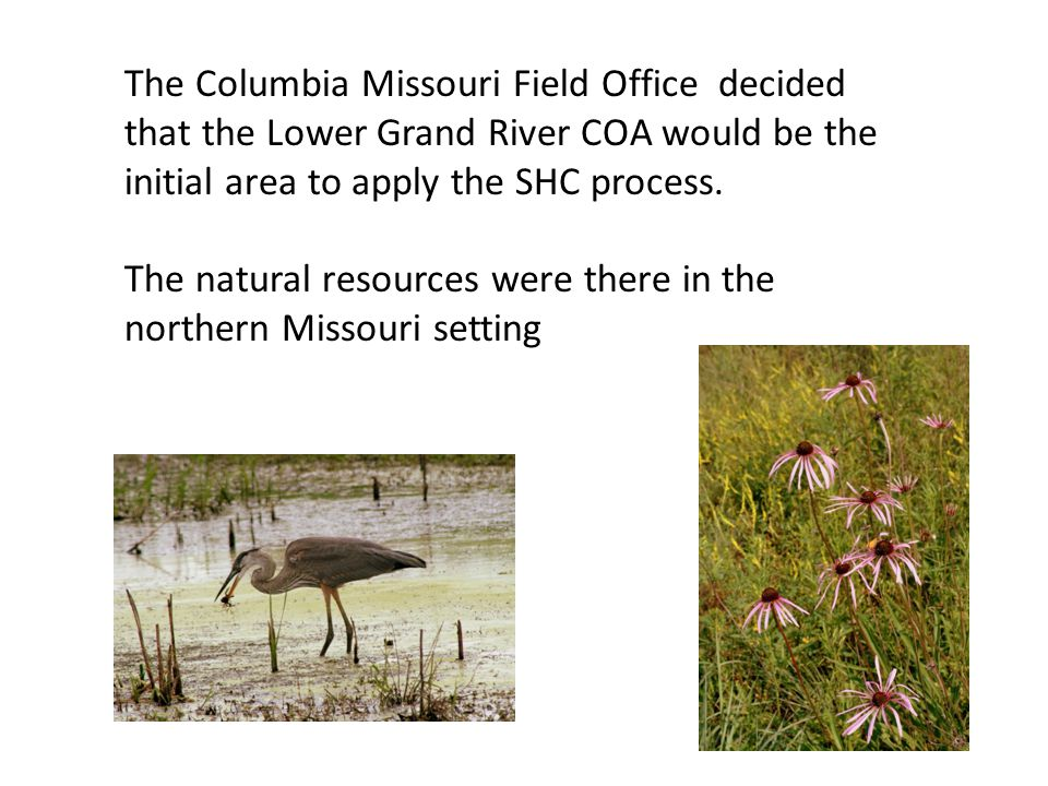 The Columbia Missouri Field Office decided that the Lower Grand River COA would be the initial area to apply the SHC process.