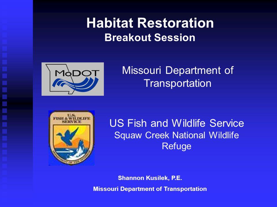 Missouri Department of Transportation US Fish and Wildlife Service Squaw Creek National Wildlife Refuge Habitat Restoration Breakout Session Shannon Kusilek, P.E.