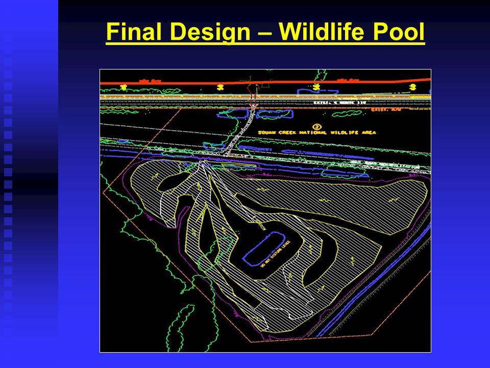 Final Design – Wildlife Pool