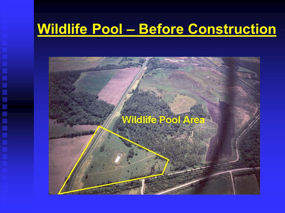 Wildlife Pool – Before Construction