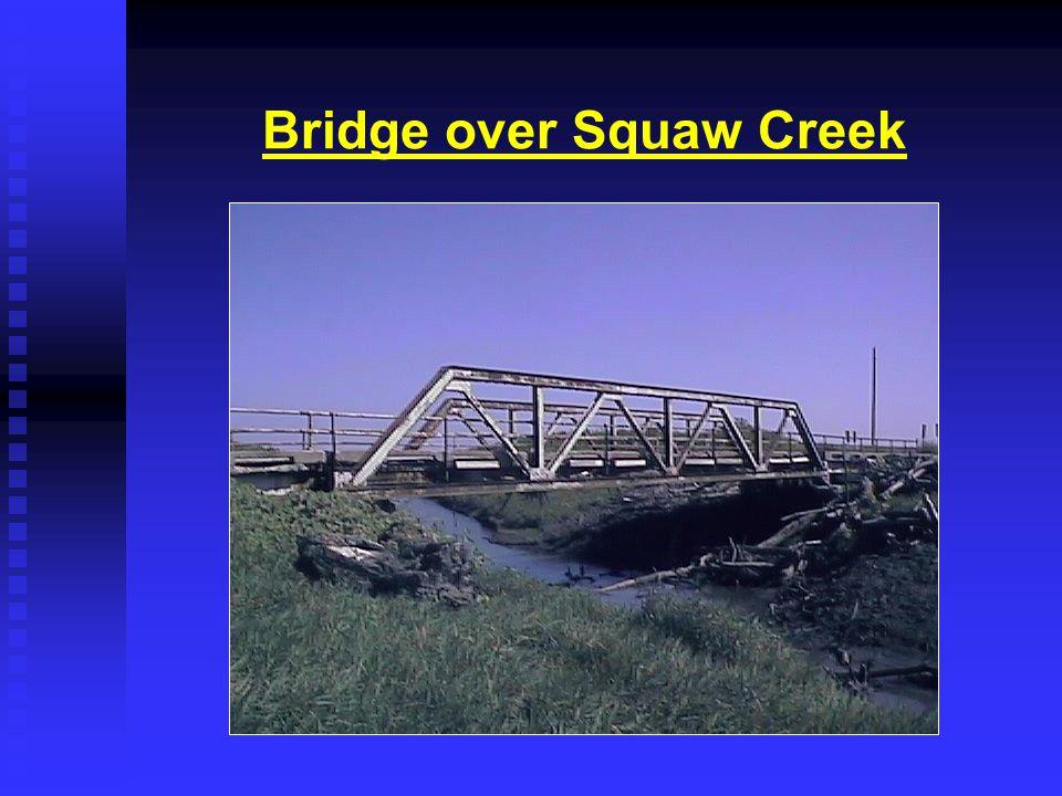 Bridge and Roadway