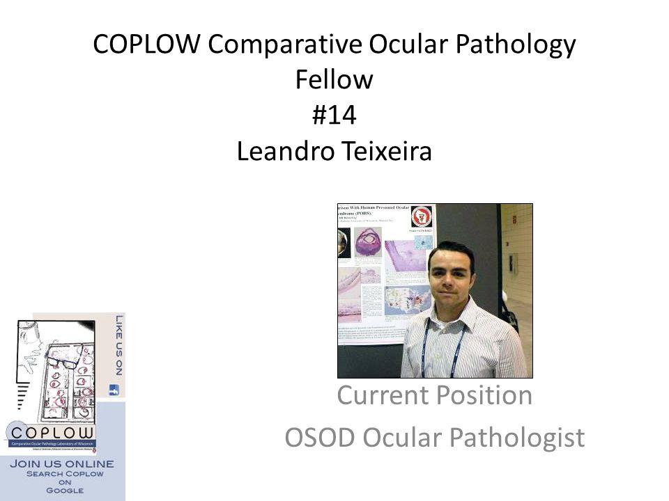 COPLOW Comparative Ocular Pathology Fellow #14 Leandro Teixeira Current Position OSOD Ocular Pathologist