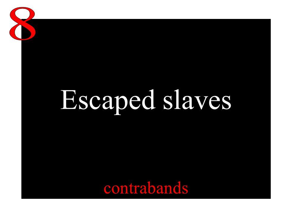 Escaped slaves contrabands