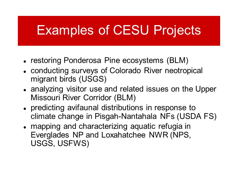 Examples of CESU Projects restoring Ponderosa Pine ecosystems (BLM) conducting surveys of Colorado River neotropical migrant birds (USGS) analyzing visitor use and related issues on the Upper Missouri River Corridor (BLM) predicting avifaunal distributions in response to climate change in Pisgah-Nantahala NFs (USDA FS) mapping and characterizing aquatic refugia in Everglades NP and Loxahatchee NWR (NPS, USGS, USFWS)