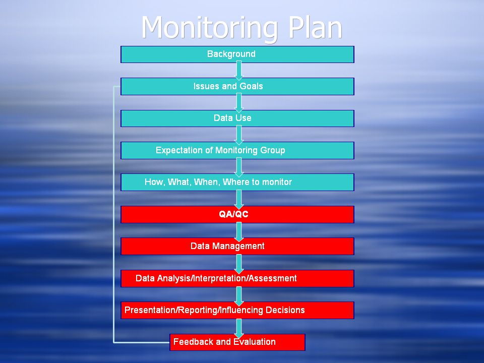 Monitoring Plan