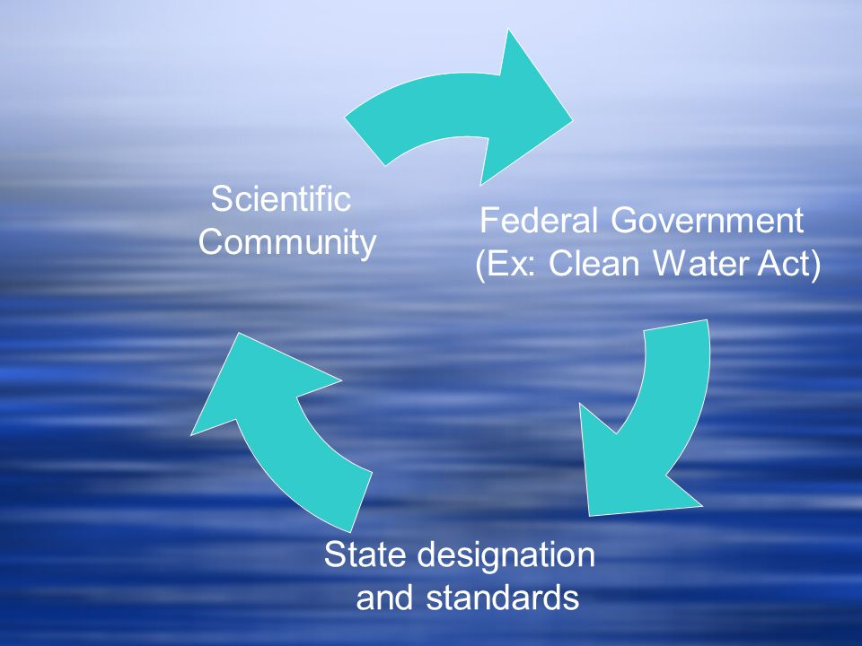Federal Government (Ex: Clean Water Act) State designation and standards Scientific Community