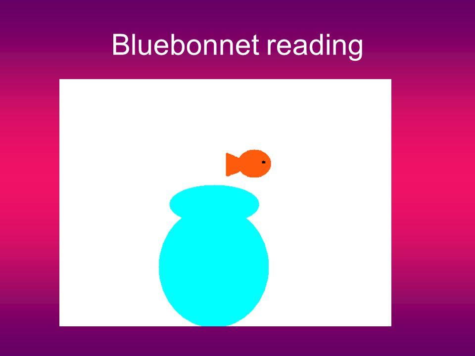 Bluebonnet reading
