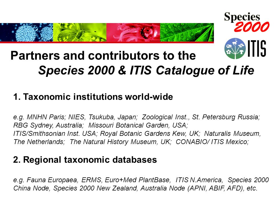 1. Taxonomic institutions world-wide e.g. MNHN Paris; NIES, Tsukuba, Japan; Zoological Inst., St.