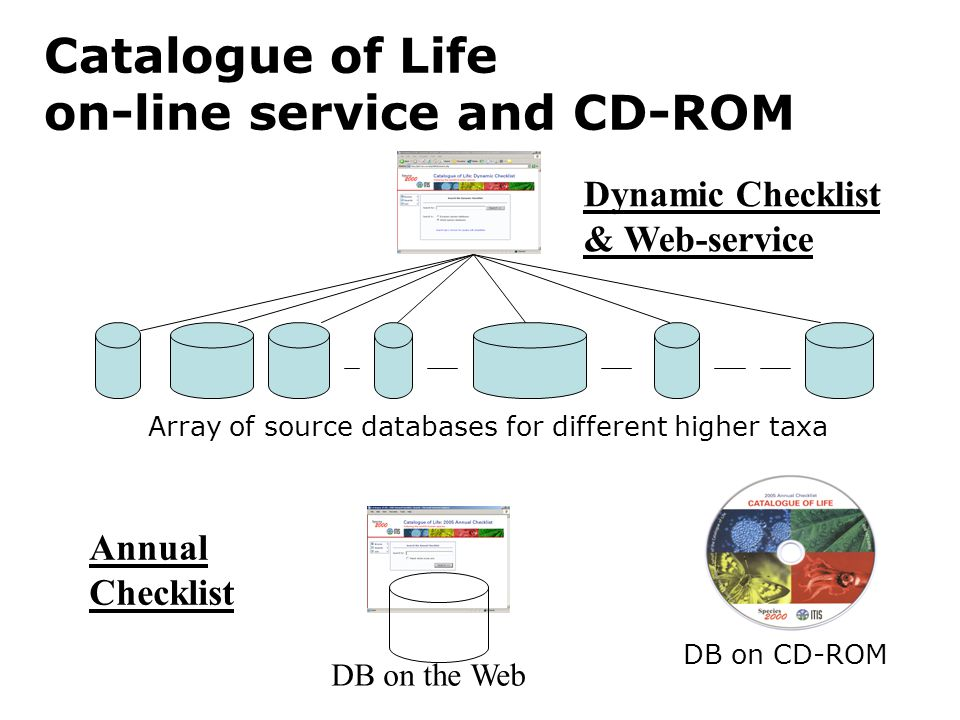 Catalogue of Life on-line service and CD-ROM Array of source databases for different higher taxa Dynamic Checklist & Web-service Annual Checklist DB on the Web DB on CD-ROM