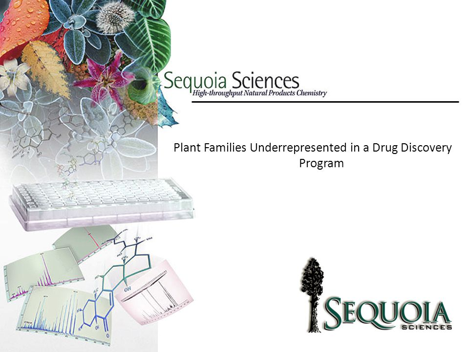 Plant Families Underrepresented in a Drug Discovery Program