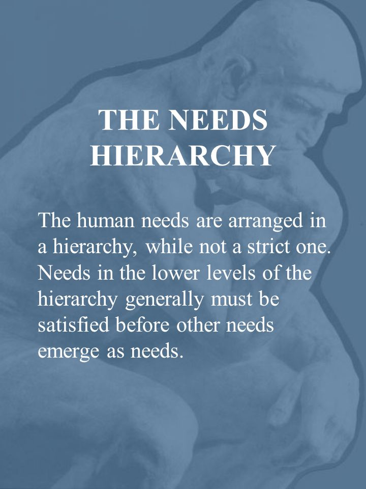 PHYSIOLOGICAL NEEDS* Air Water Food Shelter Sleep Sex *These needs are most basic and most powerful, as they are the needs we have for human survival.