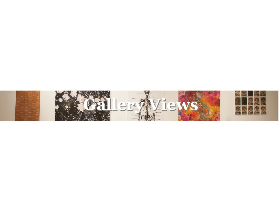 Gallery Views