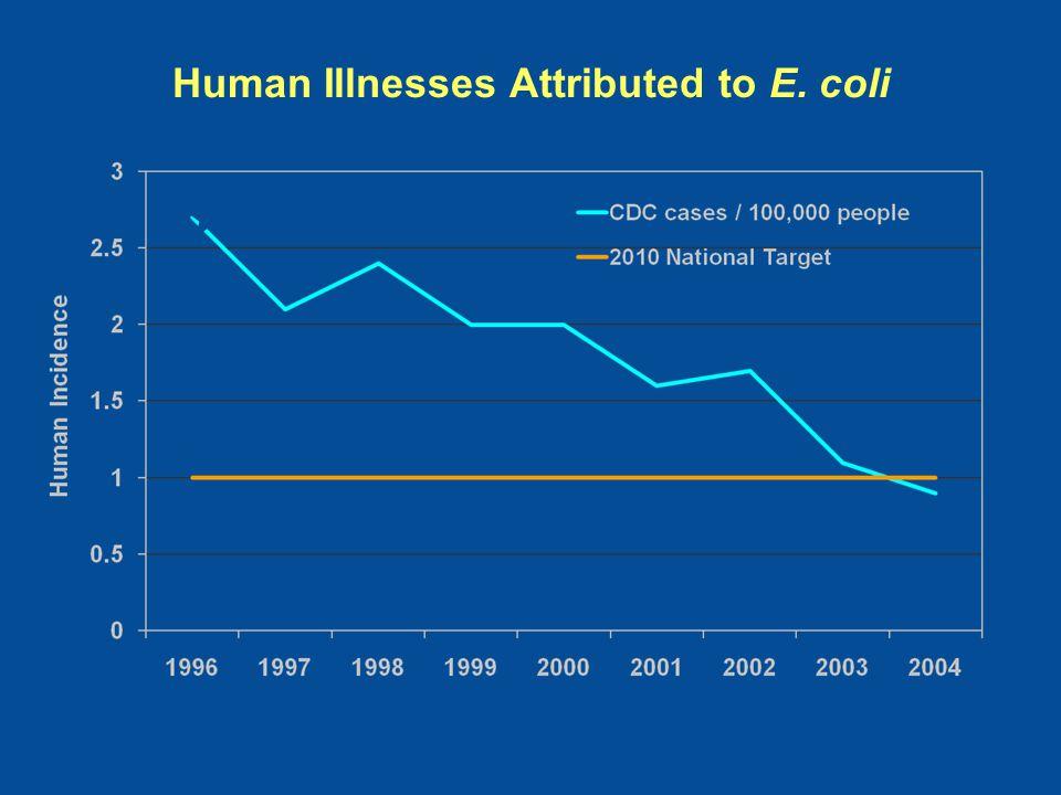 Human Illnesses Attributed to E. coli