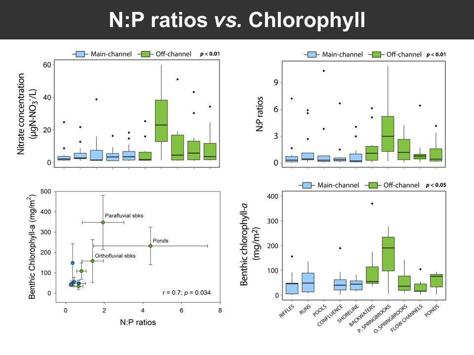 N:P ratios vs. Chlorophyll