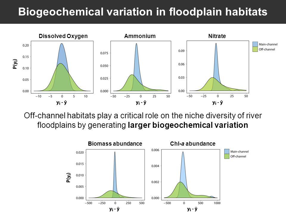Biogeochemical variation in floodplain habitats Off-channel habitats play a critical role on the niche diversity of river floodplains by generating larger biogeochemical variation Ammonium NitrateDissolved Oxygen Biomass abundanceChl-a abundance