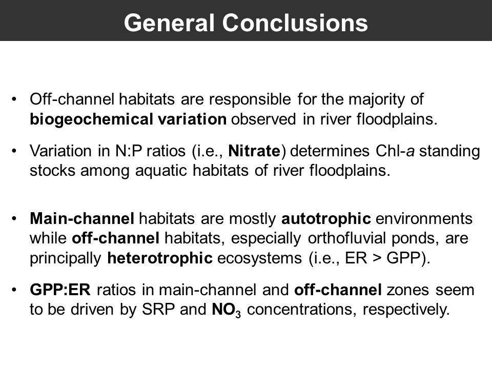 Off-channel habitats are responsible for the majority of biogeochemical variation observed in river floodplains.
