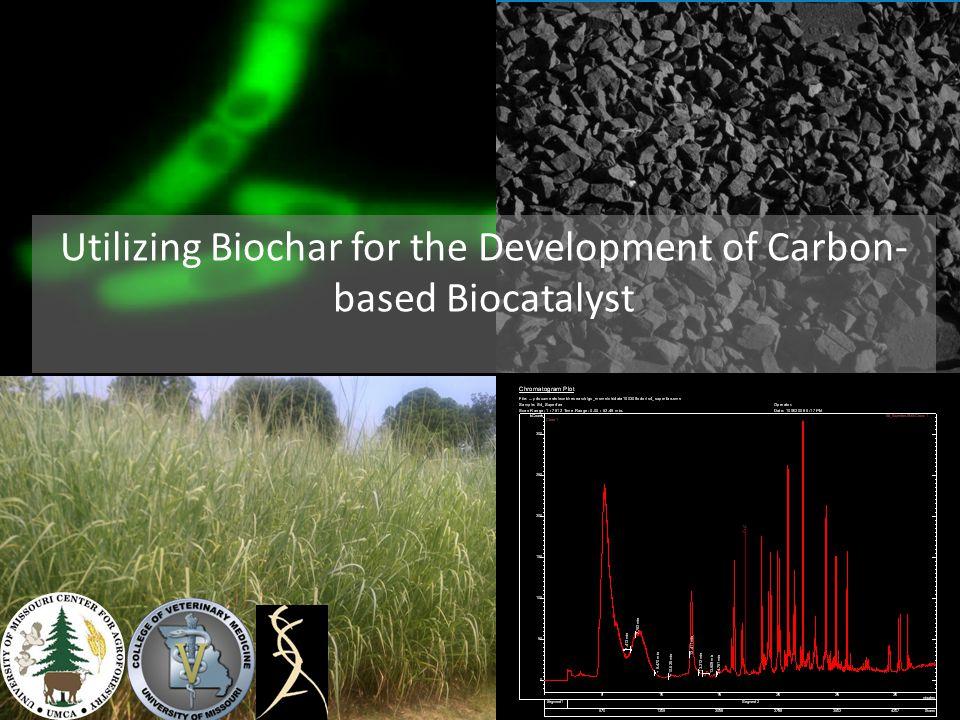 Utilizing Biochar for the Development of Carbon- based Biocatalyst