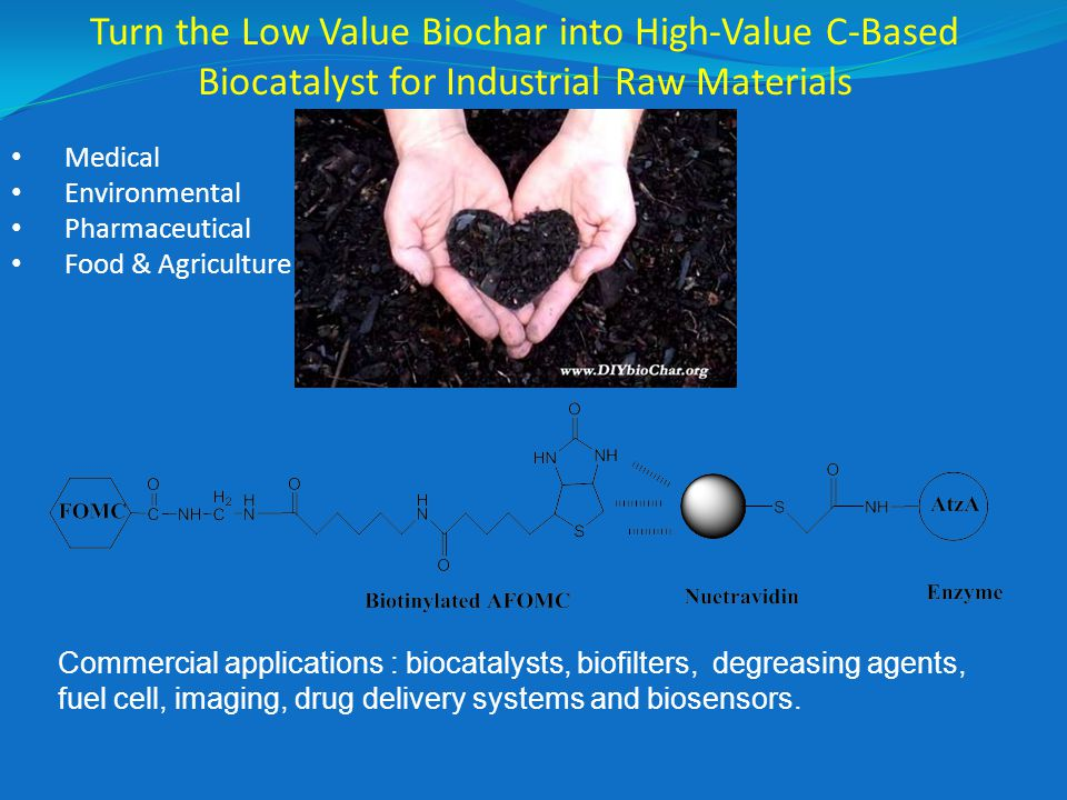 Medical Environmental Pharmaceutical Food & Agriculture Turn the Low Value Biochar into High-Value C-Based Biocatalyst for Industrial Raw Materials Commercial applications : biocatalysts, biofilters, degreasing agents, fuel cell, imaging, drug delivery systems and biosensors.