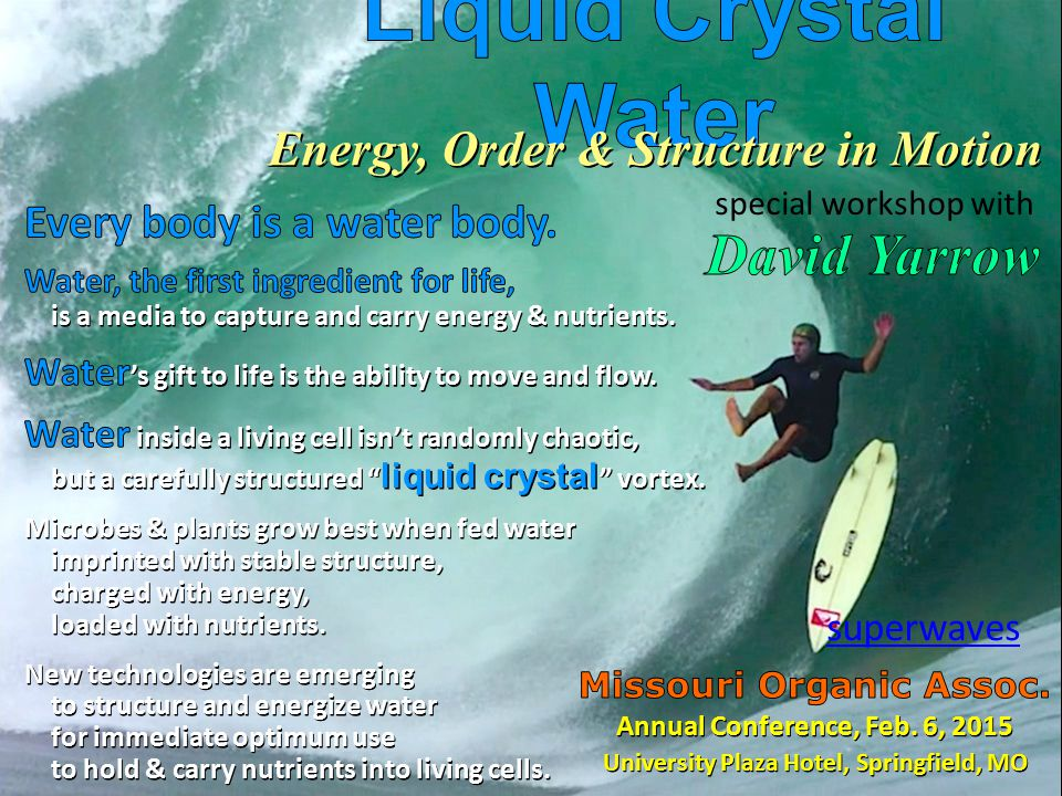 Energy, Order & Structure in Motion superwaves special workshop with