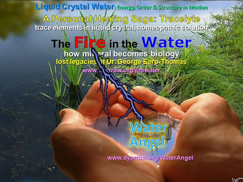 Liquid Crystal Water : Energy, Order & Structure in Motion trace elements in liquid crystal, homeopathic solution how mineral becomes biology lost legacies of Dr.