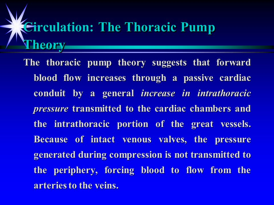 The Thoracic Pump Theory Circulation: The Thoracic Pump Theory The thoracic pump theory suggests that forward blood flow increases through a passive c
