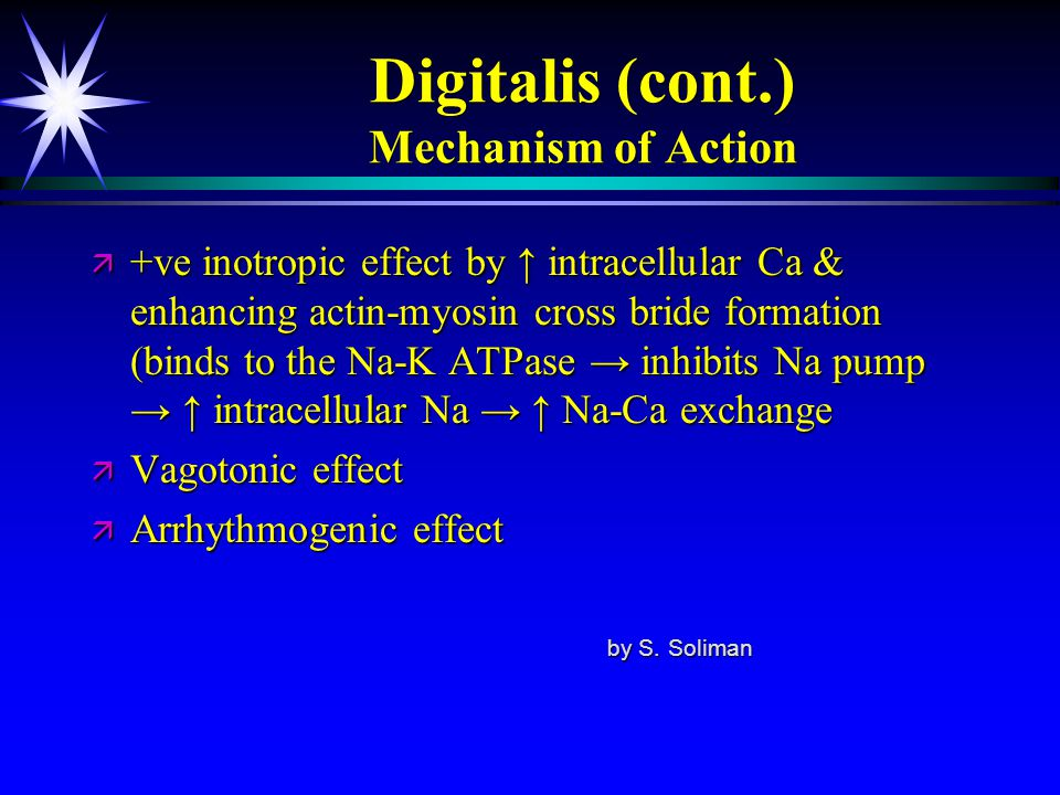 Digitalis (cont.) Mechanism of Action ä +ve inotropic effect by ↑ intracellular Ca & enhancing actin-myosin cross bride formation (binds to the Na-K A