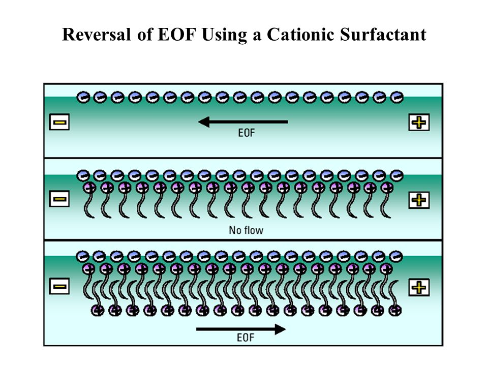 Reversal of EOF Using a Cationic Surfactant