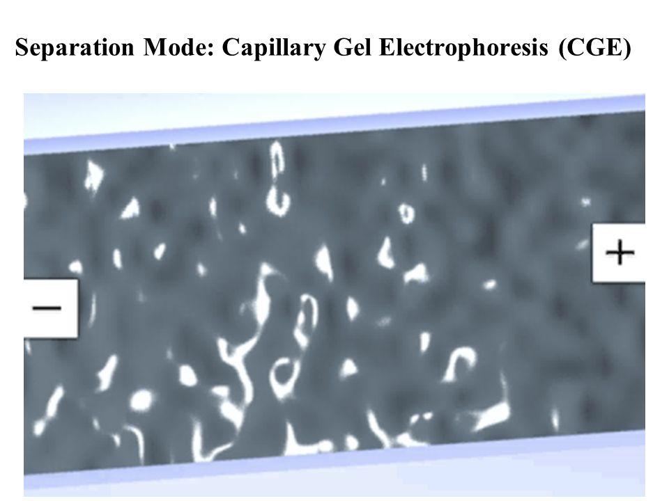 Separation Mode: Capillary Gel Electrophoresis (CGE)