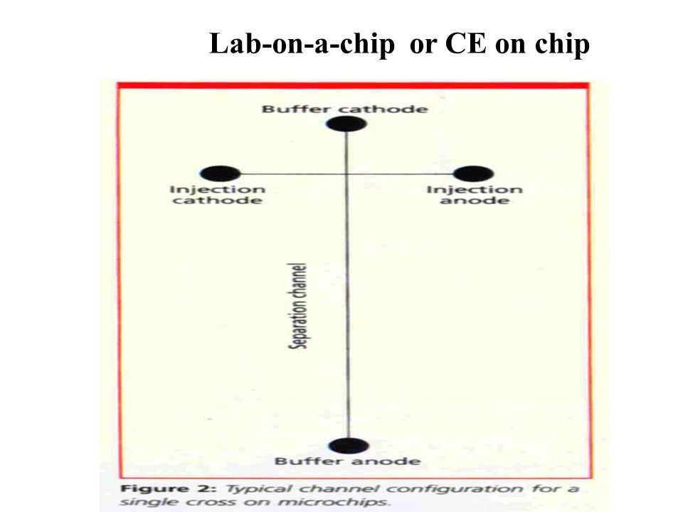 Lab-on-a-chip or CE on chip