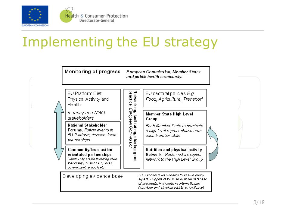 3/18 Implementing the EU strategy