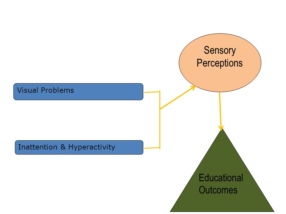 Visual Problems Inattention & Hyperactivity Sensory Perceptions Educational Outcomes