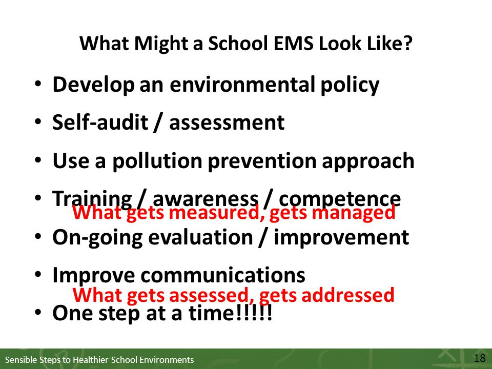 Sensible Steps to Healthier School Environments What Might a School EMS Look Like.