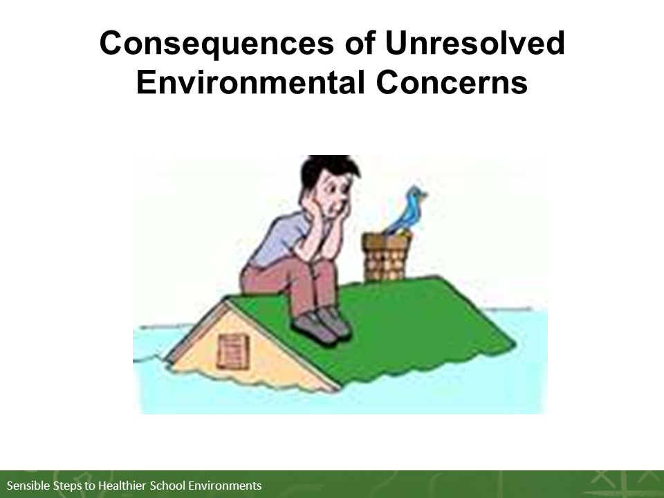 Sensible Steps to Healthier School Environments Consequences of Unresolved Environmental Concerns
