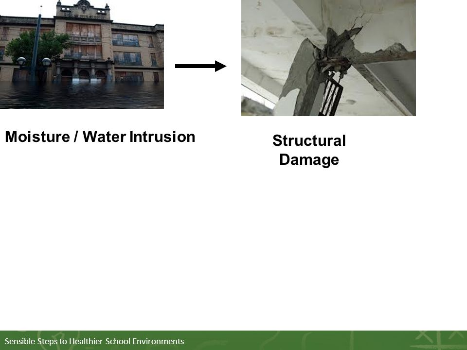 Sensible Steps to Healthier School Environments Structural Damage Moisture / Water Intrusion