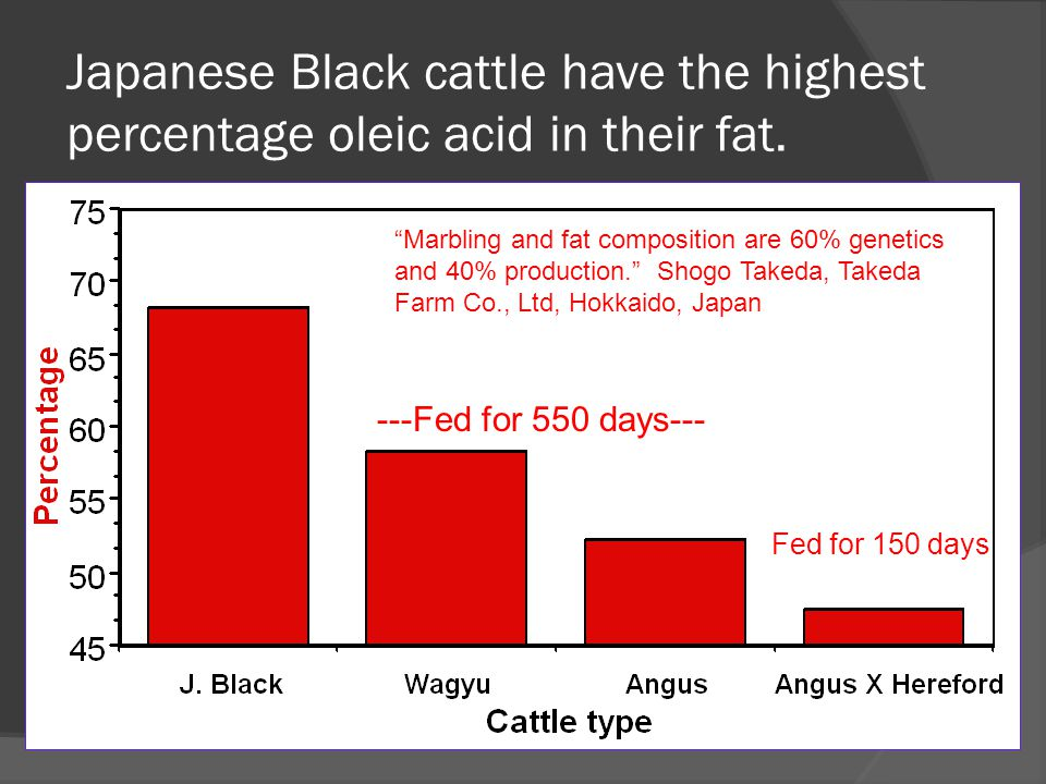 "Japanese Black cattle have the highest percentage oleic acid in their fat. ""Marbling and fat composition are 60% genetics and 40% production."" Shogo T"