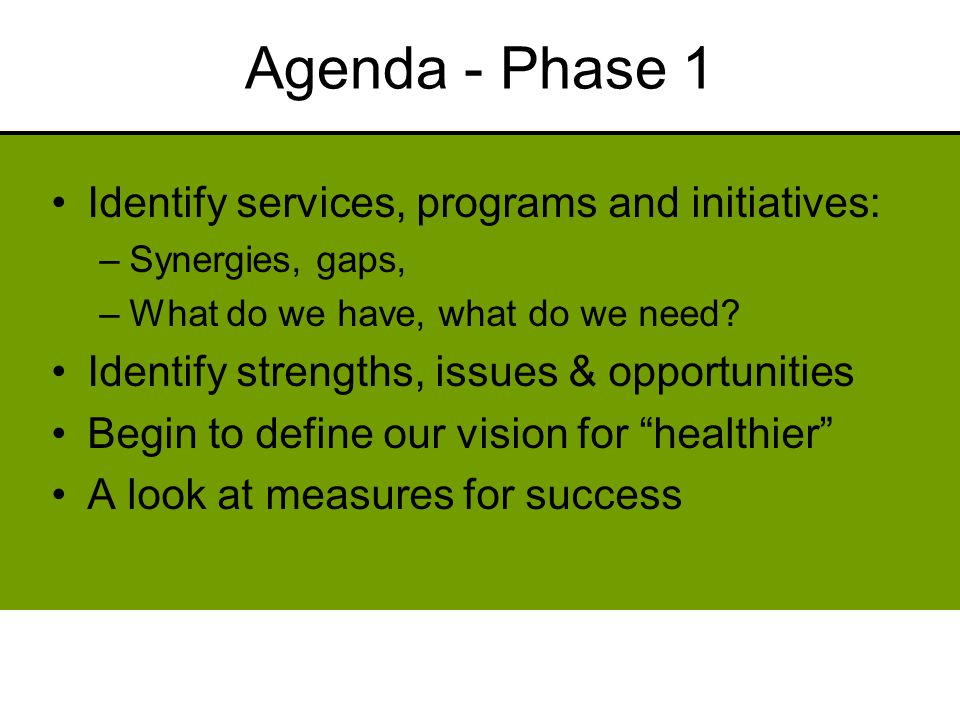 Agenda - Phase 1 Identify services, programs and initiatives: –Synergies, gaps, –What do we have, what do we need.