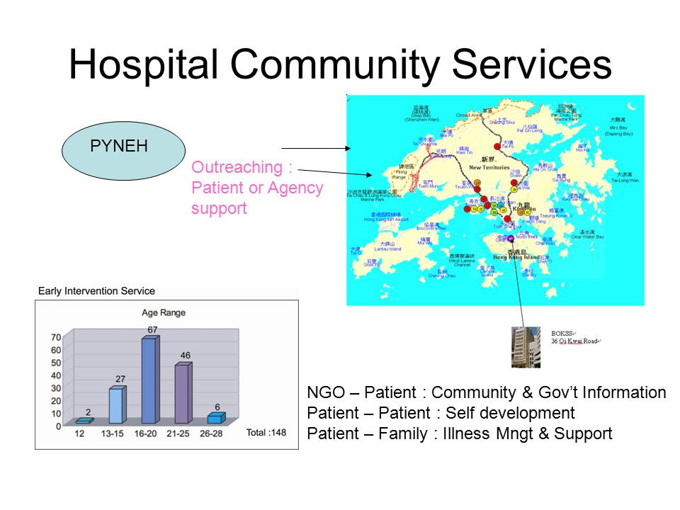 Hospital Community Services PYNEH NGO – Patient : Community & Gov't Information Patient – Patient : Self development Patient – Family : Illness Mngt & Support Outreaching : Patient or Agency support