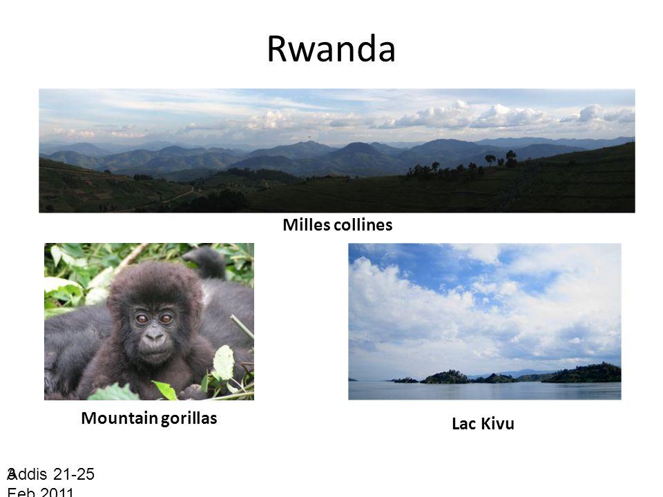 Rwanda Addis 21-25 Feb.2011 3 Milles collines Mountain gorillas Lac Kivu