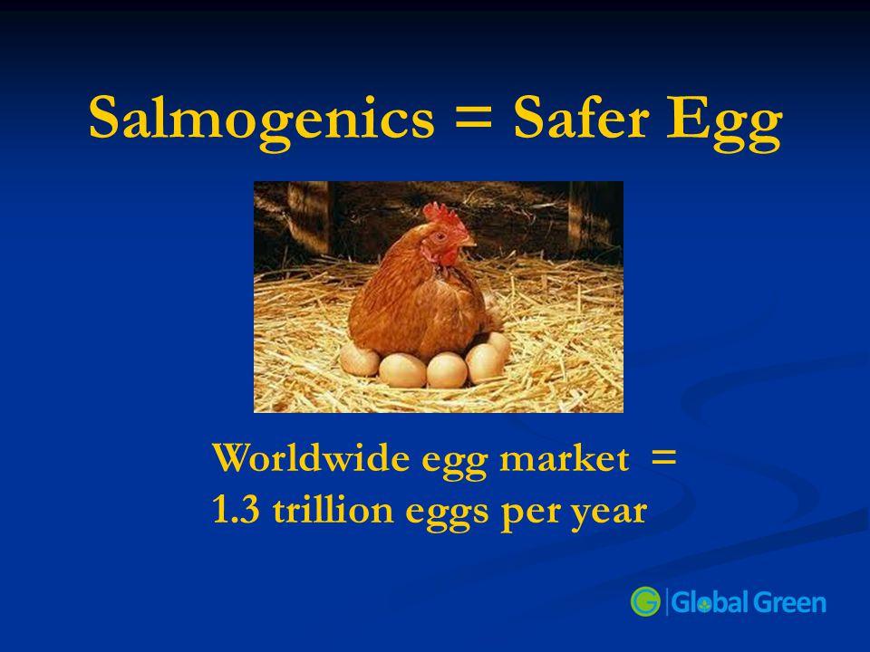 Salmogenics = Safer Egg Worldwide egg market = 1.3 trillion eggs per year