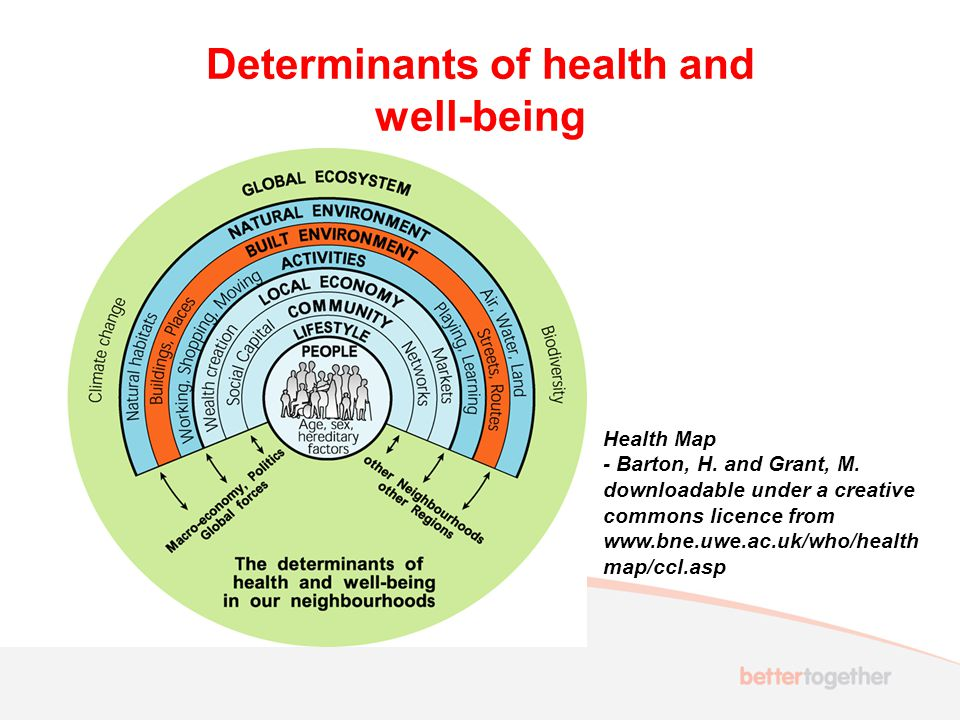 Determinants of health and well-being Health Map - Barton, H.