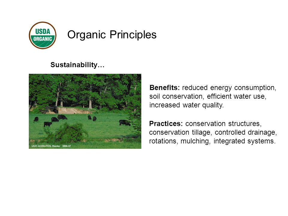 Organic Principles Sustainability… Benefits: reduced energy consumption, soil conservation, efficient water use, increased water quality.