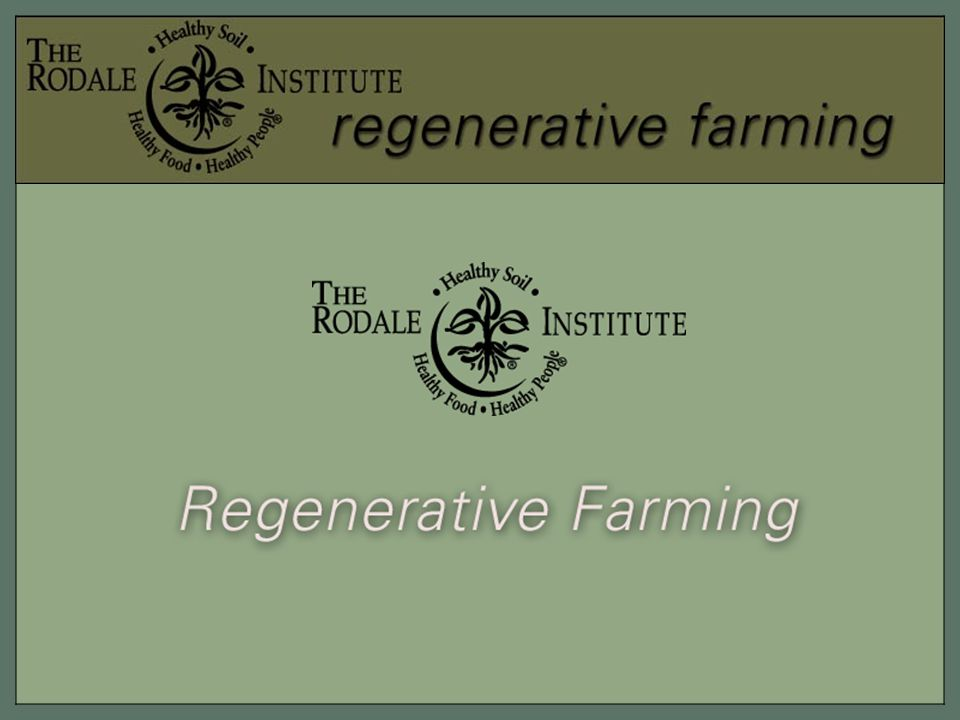 Through its scientific research, support for farmers and community education programs, the Rodale Institute is taking a leading role in the study and promotion of regenerative farming.