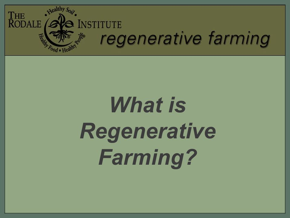 Regenerative farming is a long- term, holistic approach towards agriculture that attempts to grow as much food using as little resources as possible, in a way that revitalizes the soil rather than depleting it.