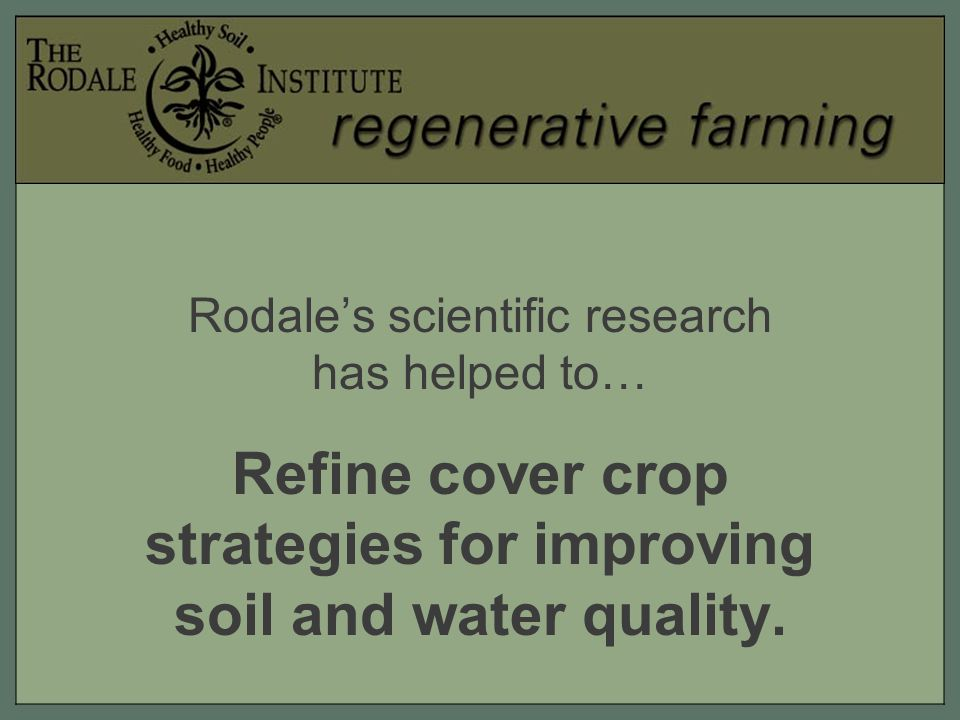 Rodale's scientific research has helped to… Refine cover crop strategies for improving soil and water quality.