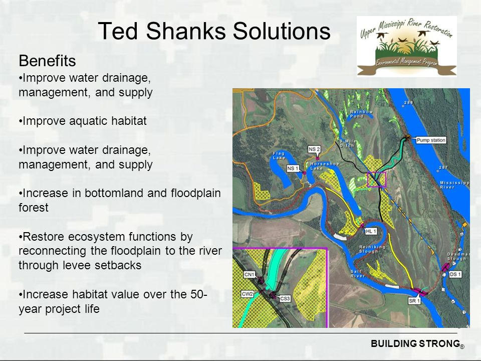 BUILDING STRONG ® Ted Shanks Solutions Benefits Improve water drainage, management, and supply Improve aquatic habitat Improve water drainage, management, and supply Increase in bottomland and floodplain forest Restore ecosystem functions by reconnecting the floodplain to the river through levee setbacks Increase habitat value over the 50- year project life