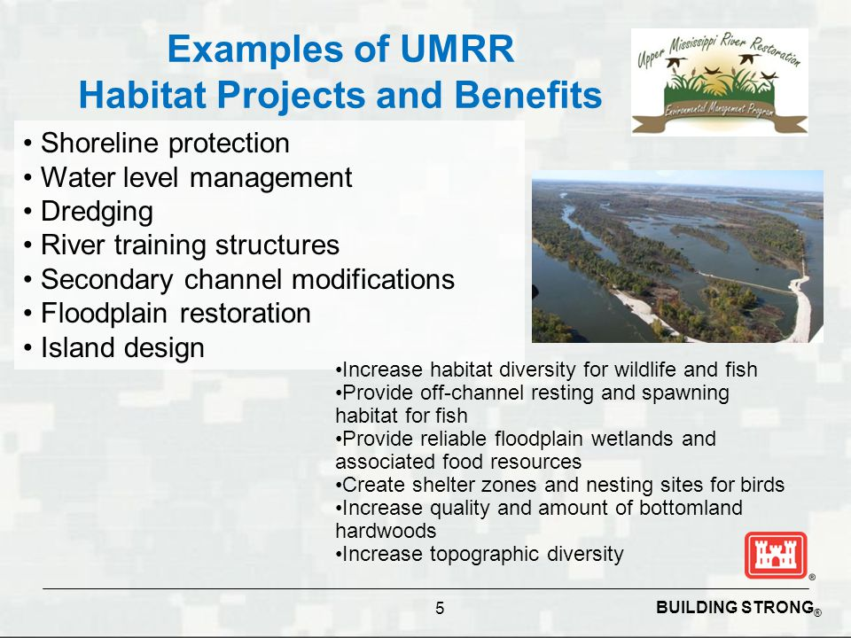 BUILDING STRONG ® Examples of UMRR Habitat Projects and Benefits 5 Shoreline protection Water level management Dredging River training structures Secondary channel modifications Floodplain restoration Island design Increase habitat diversity for wildlife and fish Provide off-channel resting and spawning habitat for fish Provide reliable floodplain wetlands and associated food resources Create shelter zones and nesting sites for birds Increase quality and amount of bottomland hardwoods Increase topographic diversity